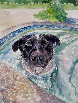 Wilma in the Pool by Gloria Turner