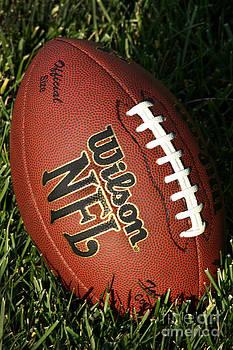 Gary Gingrich Galleries - Wilson NFL Football - 5100