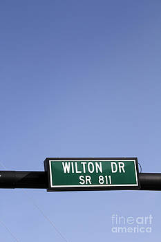 Wilton Drive SR 811 Road Sign by Lee Serenethos