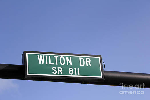 Wilton Drive Street Sign by Lee Serenethos