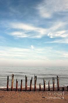Winchelsea Beach England by David Gardener
