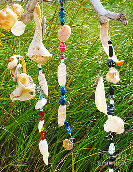 Michelle Constantine - Wind Chimes at the Beach