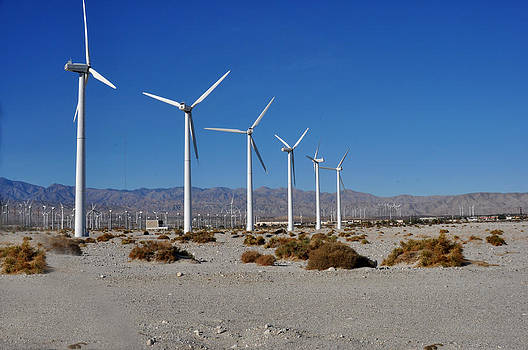 Wind Farm near Palm Springs by Diane Lent