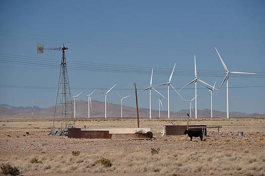 Wind Farm by Shirin McArthur
