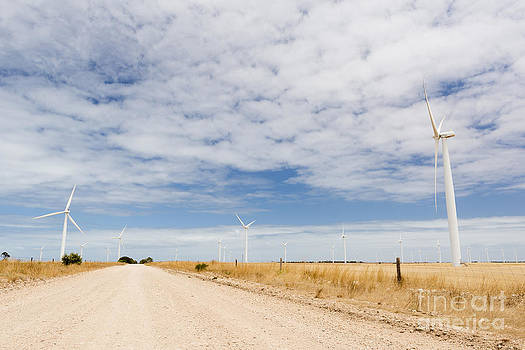 Tim Hester - Wind Farm