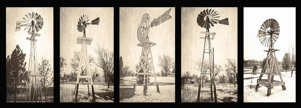 Wind pumps of Limon  by Steven  Taylor