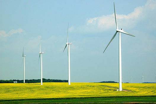 Wind Turbines in a Canola Field. by Rob Huntley