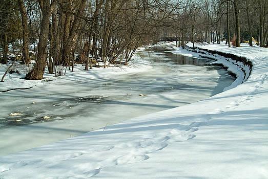 Devinder Sangha - Winding Creek