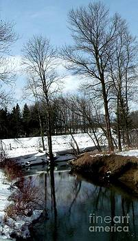 Gail Matthews - Winding Creek shows reflection