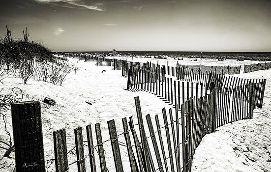 Winding Fence - Bridgehampton Beach - NY by Madeline Ellis