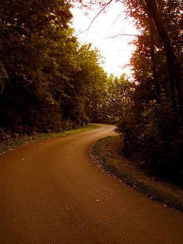 Gilbert Photography And Art - Winding Road