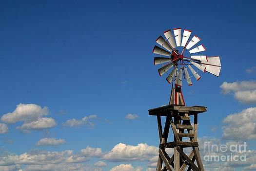 Gary Gingrich Galleries - Windmill-5749B