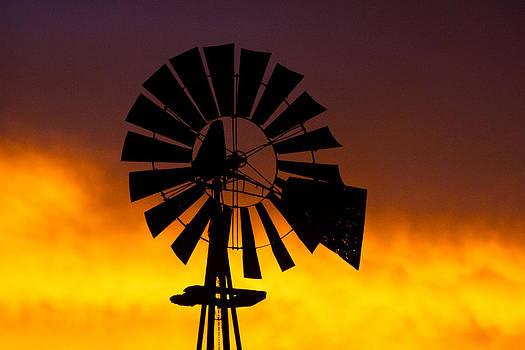 Windmill Ablaze by Shirley Heier