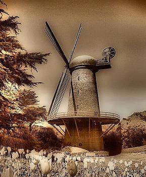 Marcus Armani - Windmill At GGP