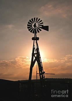Mae Wertz - Windmill at Sunrise