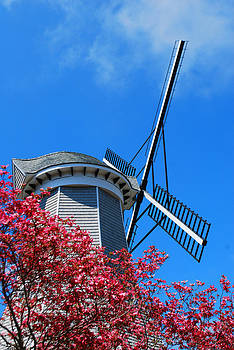 Windmill at the Aptucxet Trading Post by Lorena Mahoney