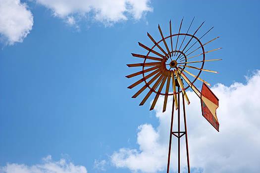 Windmill by Borislav Marinic