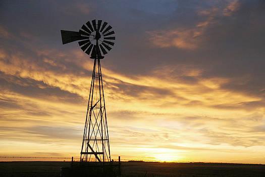 Windmill in Soft blue sky by Shirley Heier