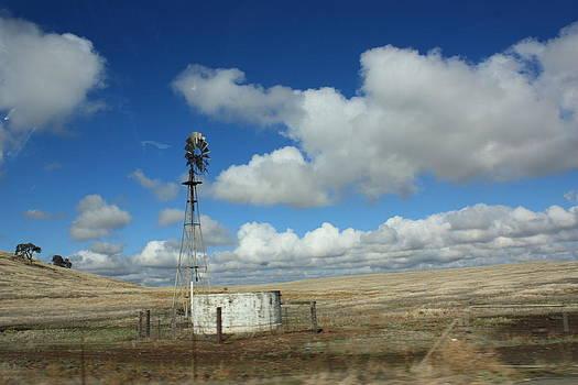 Windmill in the wind by Nedra Russ
