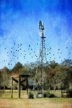 Windmill by Joan Bertucci