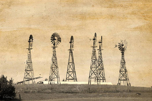 Windmill Ranch by Andrea Kelley