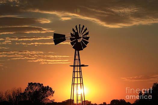 Windmill Silhouette with Orange Blazing Sky by Robert D  Brozek