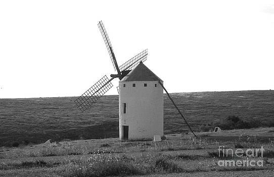 Windmill by Stefano Piccini