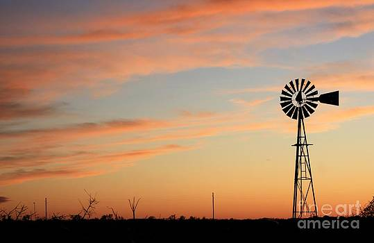 Windmill Sunset Silhouette by Robert D  Brozek