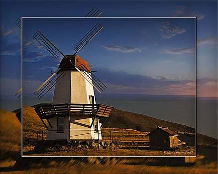 Walter Herrit - Windmill