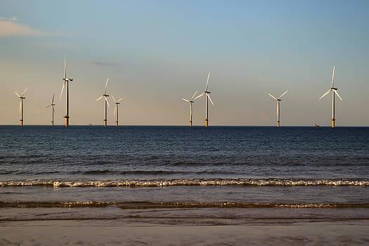 Windmills in the Sea by Scott Lyons