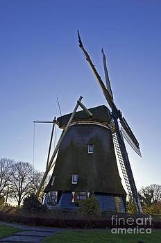 Pravine Chester - Windmills of Holland