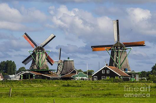 Pravine Chester - Windmills of Zaanse Schans