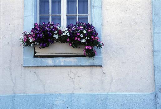 Harold E McCray - Window Box - Montreal- Canada