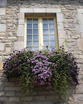Veronica Vandenburg - Window Box With Purple Blossoms
