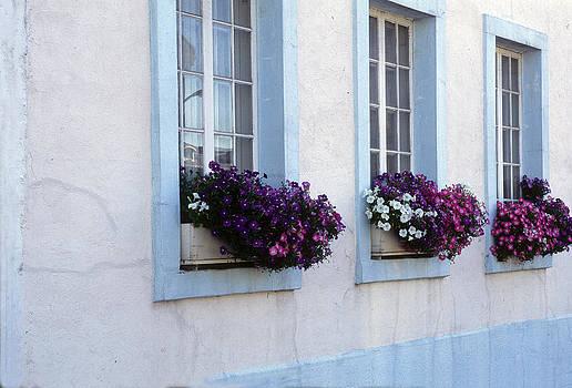 Harold E McCray - Window Boxes Montreal - Canada