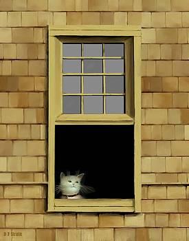 Window Cat    No. 2 by Diane Strain