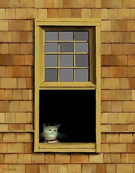 Window Cat    No.3 by Diane Strain