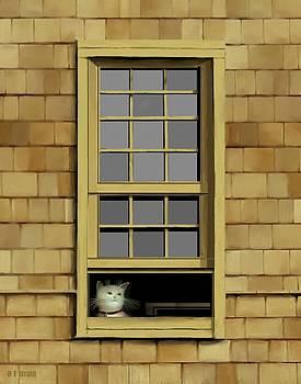 Window Cat    No.6 by Diane Strain