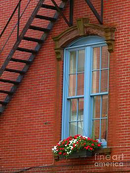 Christine Stack - Window Flower Box Milk Street Portland Maine