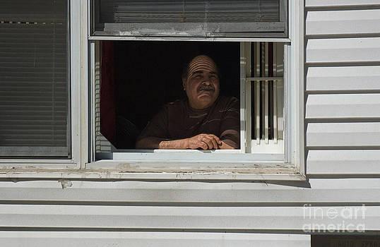 window in Brooklyn by Tina Osterhoudt