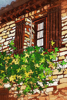 Window in Provence by Eneida Gastal-Keith