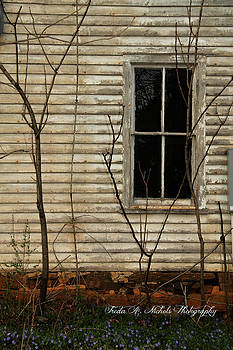 Window of the Past by Freda Nichols