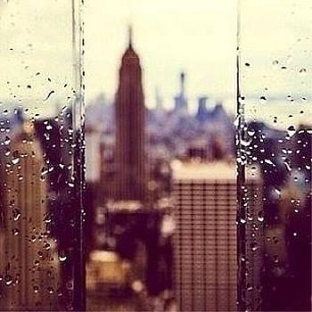 Window Sights by Alejandra Flores
