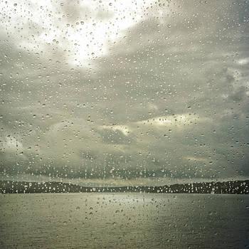Window Tears by Sally Banfill