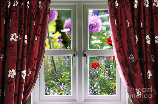 Simon Bratt Photography LRPS - Window view onto wild summer garden