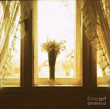 Window by Viktor Pravdica