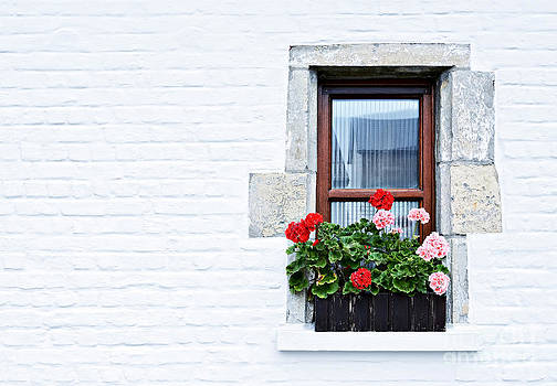 Window With Flowers by Skyfish Images