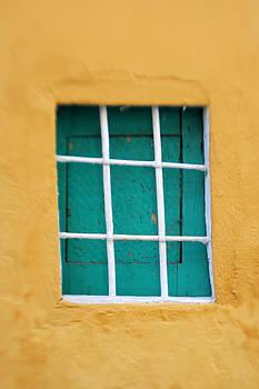 Windows by Esra Colak