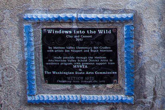 Omaste Witkowski - Windows Into the wild