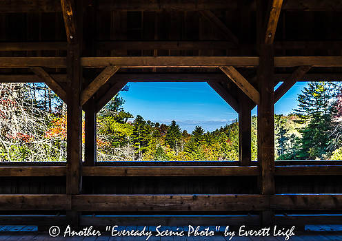 Windows to the Woods by Everett Leigh